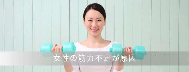 女性の筋力