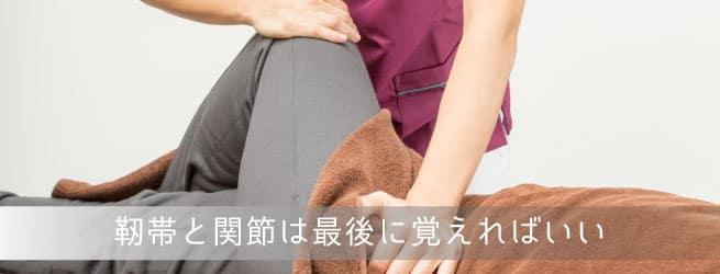 膝の靭帯と関節
