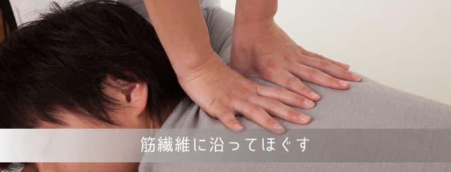 筋繊維の流れ